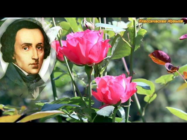 ФРЕДЕРИК ШОПЕН - Ноктюрн ми-бемоль мажор, соч. 9, № 2 ♪ Frederic Chopin - Nocturne, Op. 9 no. 2