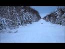 Зимняя охота на зайца с русской гончей.