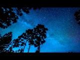 Robot Koch - Nitesky (ft. John LaMonica)