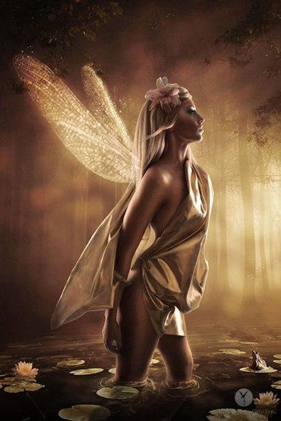 Если ты редко используешь свои крылья, бывает больно их расправлять.