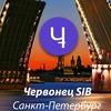 Сибирский Червонец (SIB)Санкт-Петербург