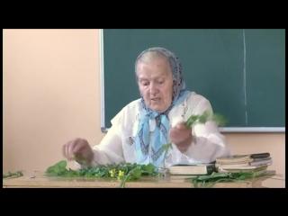 Травница Елена Фёдоровна Зайцева