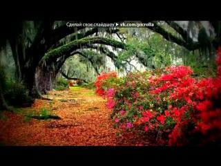 «цветы» под музыку великолепный век - турецкая скрипка - музыка души.