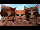Кот в сапогах - Смотреть Мультики Короткие Смешные Мультики