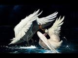 Олег Акулов - Два белых лебедя