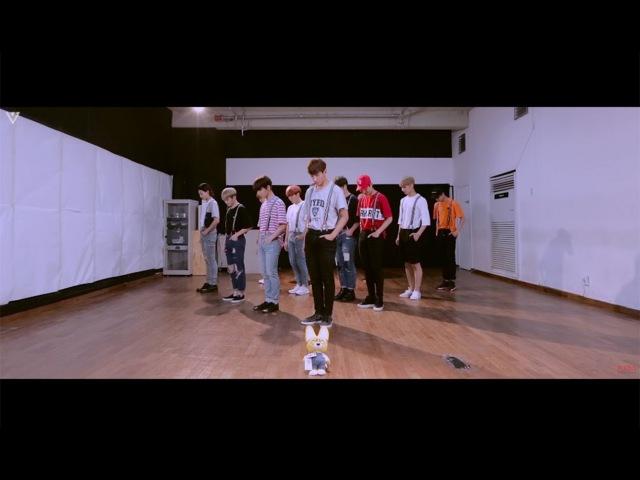 [SPECIAL VIDEO] SEVENTEEN(세븐틴) - 아주 NICE (VERY NICE) DANCE PRACTICE ver.