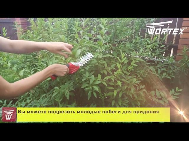 Аккумуляторные Li Ion ножницы WORTEX SG 7215 с насадкой кусторез