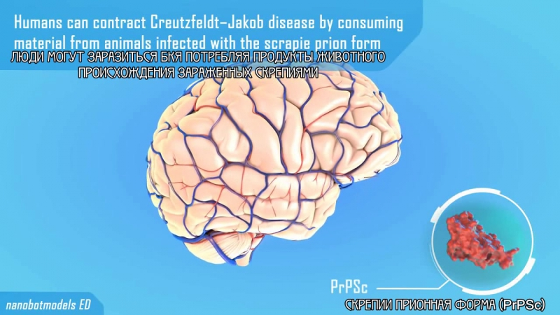 Prion disease animation