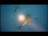 Sea Monsters - A Walking with Dinosaurs Trilogy (HD Quality) Ep. 1