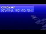 Соломина - Дельфины (Vndy Vndy Remix) Lyric Video