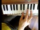 Melodii fizgarmoni 1