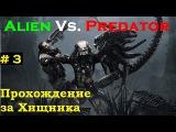 #3 Aliens vs. Predator 2010 (Руины) прохождение за Хищника