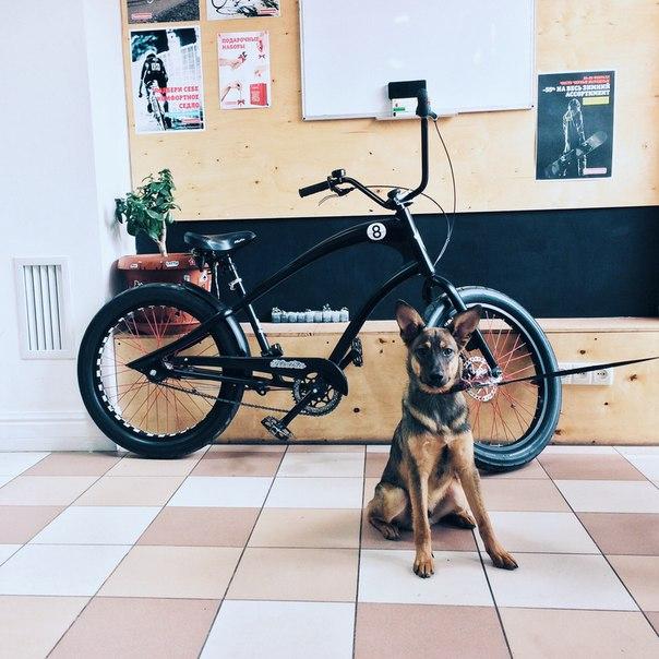 Ride&Coffee image