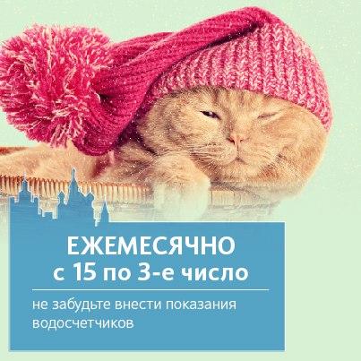 электронный дневник pgu mos ru