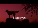 Bethoven.1992.