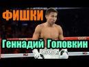 Коронные удары Геннадия Головкина GGG