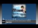 Twitch Flutterborn Sonic Breakbeat Remix