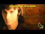 Залкин Валерий - Ветка сирени