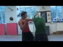 Wing Tsun Demo Dynamic 2 - SiFu Stashevich Dmitry