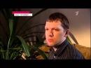 Новости на 1 первом канале о криптовалюте! БитКоин, ЛайтКоин,ЭльКоин