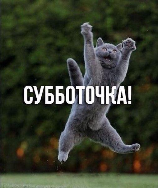 Очистные сооружения в оккупированном Севастополе так и не построены - Цензор.НЕТ 7004