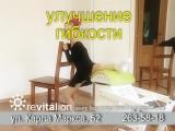 ролик-РЕВОЛ+++желтый-большой+музыка