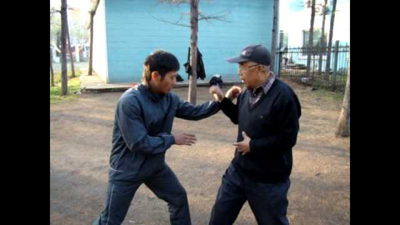 With kungfu grandmaster Синъицюань. мастер Ян Юйчен. Ляньхуаньпао