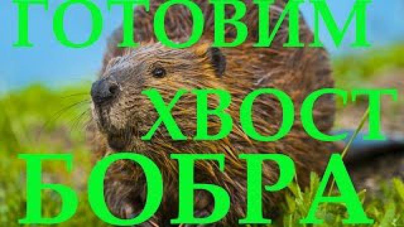 Готовим хвост бобра, как приготовить хвост бобра! Cooking beaver tail, beaver tail how to cook!