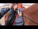Люди и лошади. Чудо взаимного общения. Говорит ЭКСПЕРТ