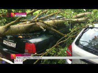 Синоптики предупреждают о резком ухудшении погоды в Москве и области