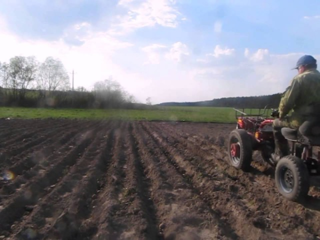 Мотоблок Беларус - 08МТ. Посадка картошки с адаптером, 2014 г.