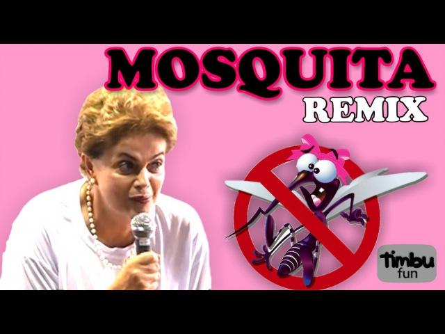 Dilma Mosquita