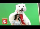 Merry Christmas with the funny Coca Cola Bear