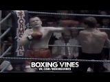 BOXERS PUNCHED THROUGH THE ROPES #5 (Boxing Vines) | vk.comboxingvines