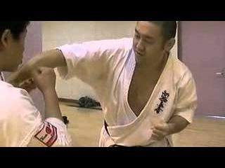 Norichika Tsukamoto. Hiza geri technique