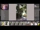 How To Use Adobe Lightroom by Fstoppers