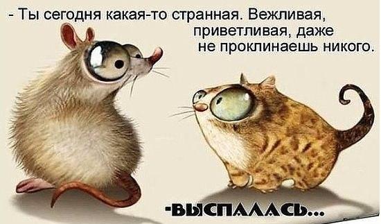 https://pp.vk.me/c630726/v630726162/1ffec/VSB0ezVLnf0.jpg