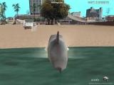 тупое видео про акулу и литл