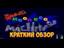 Dr  Robotnik`s Mean Bean Machine - краткий обзор игры