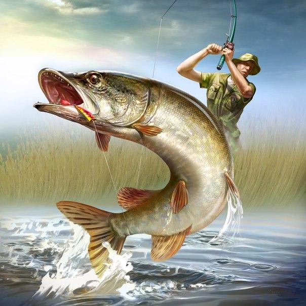 Картины открытки о рыбалке 35