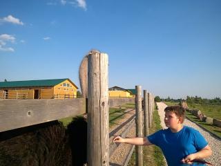 Страусинная и не только ферма