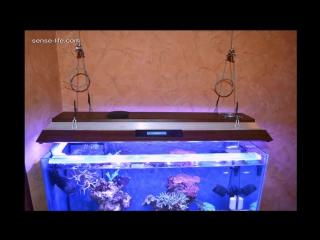Как сделать светодиодный светильник для аквариума своими руками