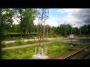 -Подъезжая к Москве. Из окна поезда Ласточка - Смоленск-Москва. Лето 2015 года. Мой личный архив.-