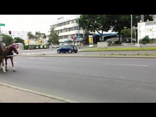 Рано утром на улицах Вены