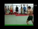 Боксёр против Качка