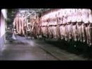 Величайшая речь Чарли Чаплина в сатирическом фильме 'Великий диктатор'   1940 г