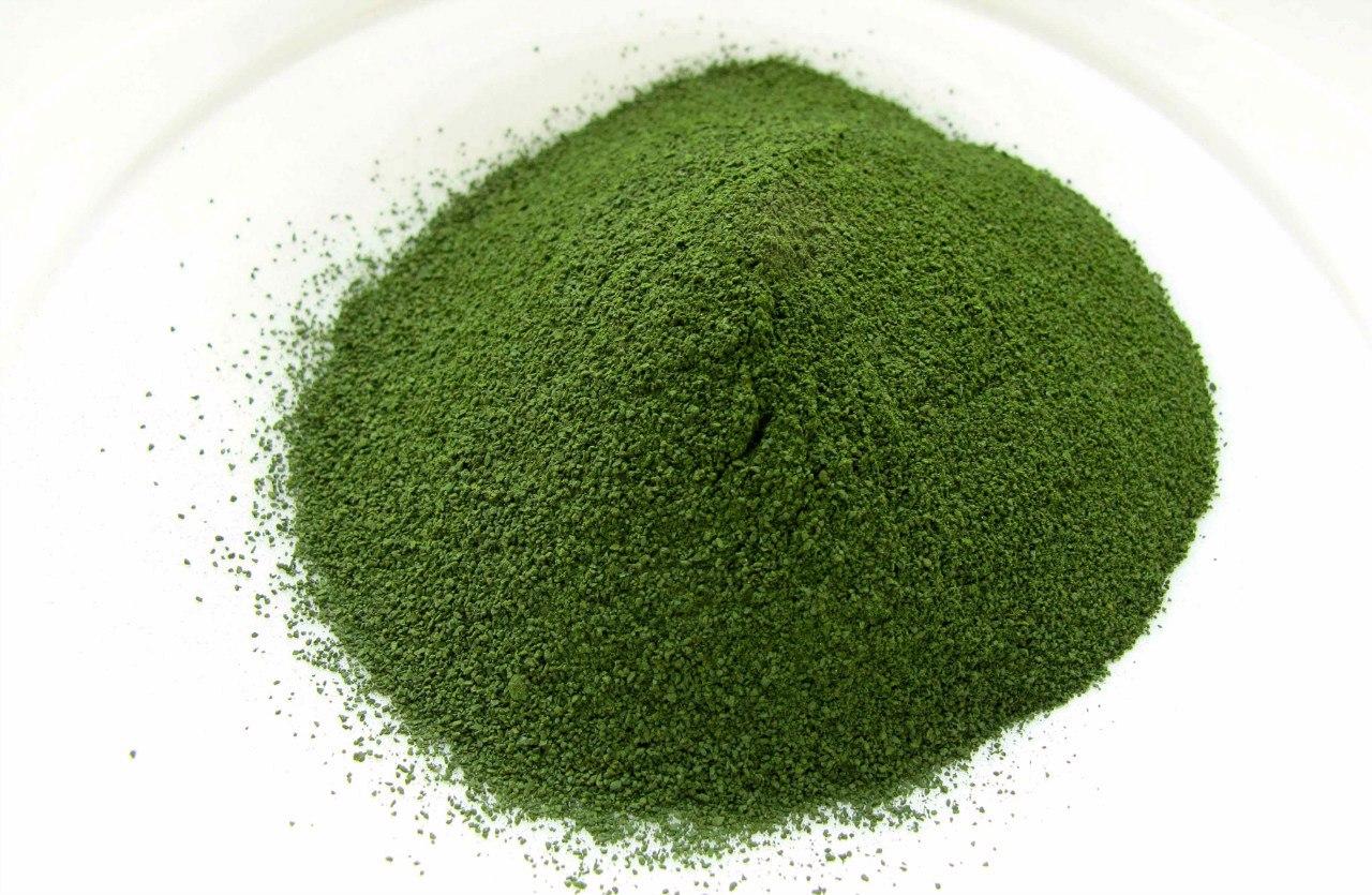 Высушенные водоросли Хлорелла