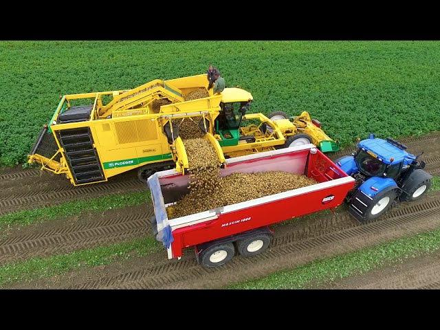 Potato Harvest | PLOEGER AR-4BX Fendt New Holland | Demijba Van Peperstraten