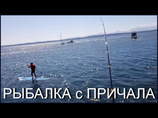 2015 Рыбалка с Причала Камбала Бычки и Другая Рыба Как Ловить Жизнь в США Тихий Океан Сиэтл