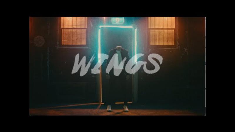 Armand Van Helden Wings